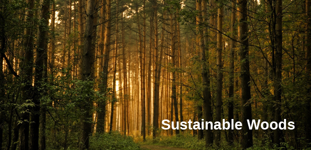 Sustainable Woods