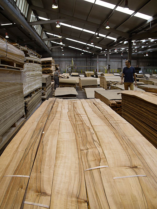 tineo wood veneer