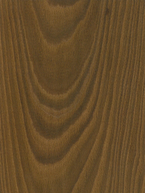 Uses For Beech Wood ~ Beech crown cut fumé natural wood veneers channel