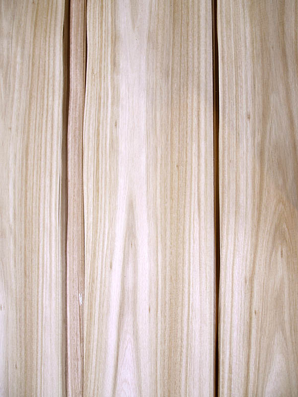 Crown Cut Eucalyptus