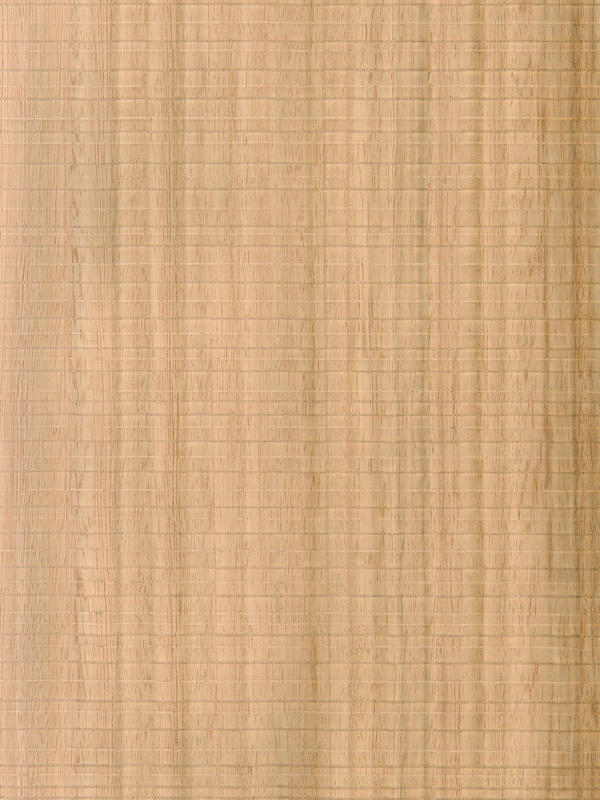 Eucalyptus Quarter Cut Feelwood Horizontal