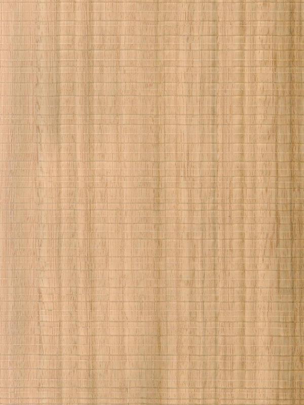 Eucalyptus Quarter Cut Feelwood Horizontal