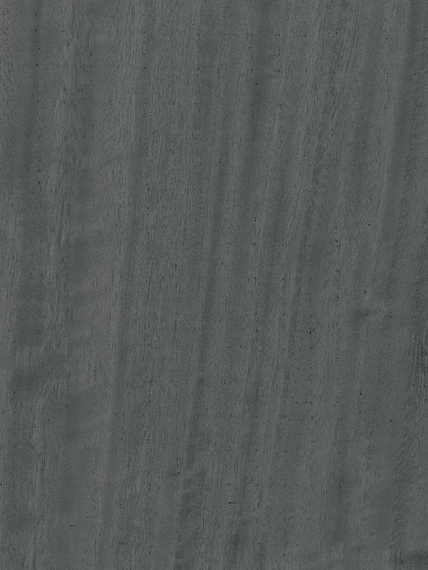 Eucalyptus Quarter Cut Frisse Aged