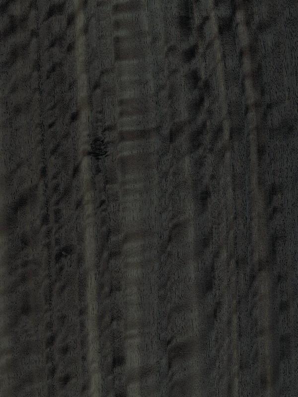 Eucalyptus Quarter Cut Frisse Fume