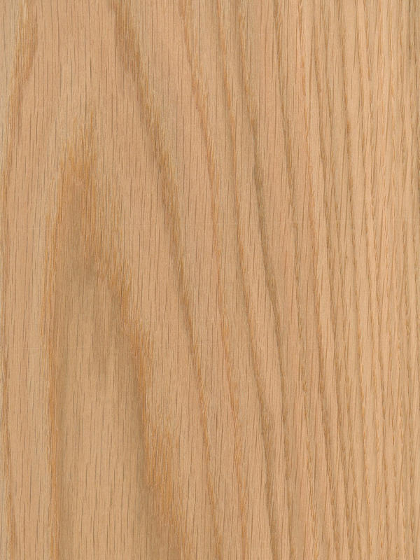Red oak crown cut natural wood veneers channel