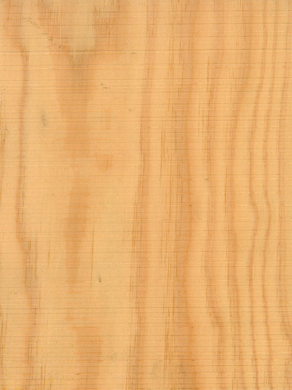 Pine Maritime Crown Cut Feelwood Horizontal