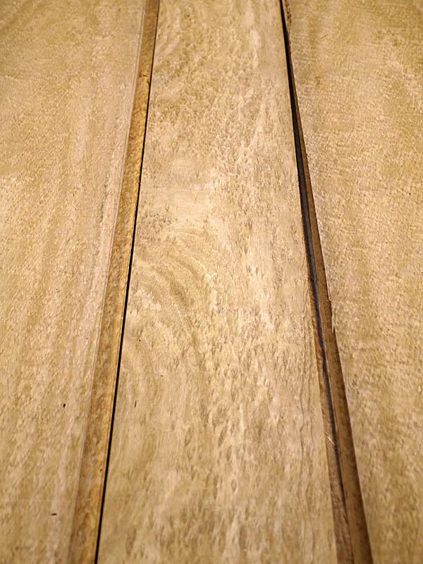 Pomelé Eucalyptus