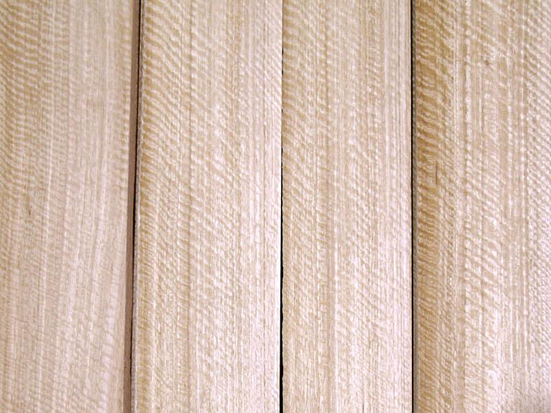 Quarter Cut Frissé Eucalyptus