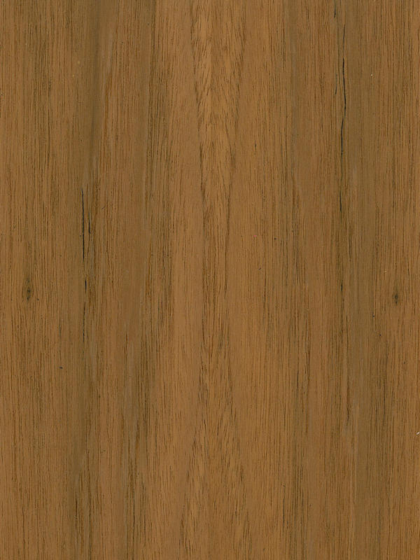Teakholz textur  Teak Crown Cut - Natural Wood Veneers - Channel Veneers