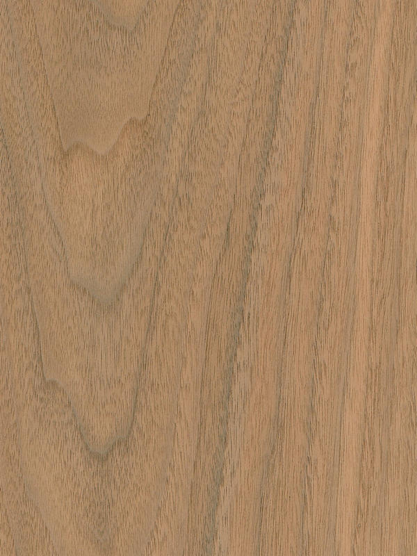 Walnut Crown Cut Nacre BCO 100