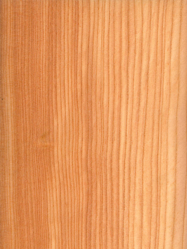 Larch Quarter Cut