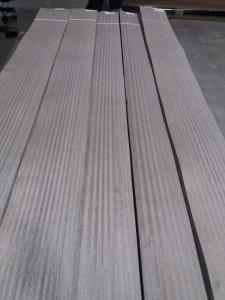 silver aged eucalyptus